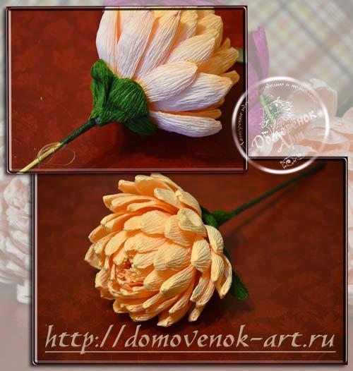 konfetnaya-xrizantema-iz-gofrirovannoj-bumagi-master-klass