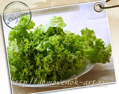 evrejskij-salat-listjya-dlya-zavorachivaniya