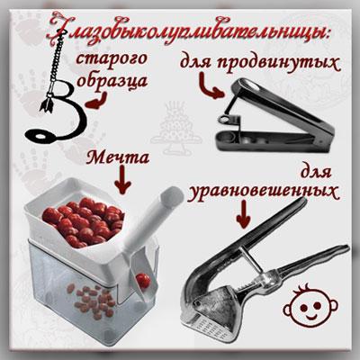 чем вынимать косточки из ягод