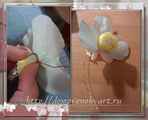 конфетные цветы из гофрированной бумаги: орхидея