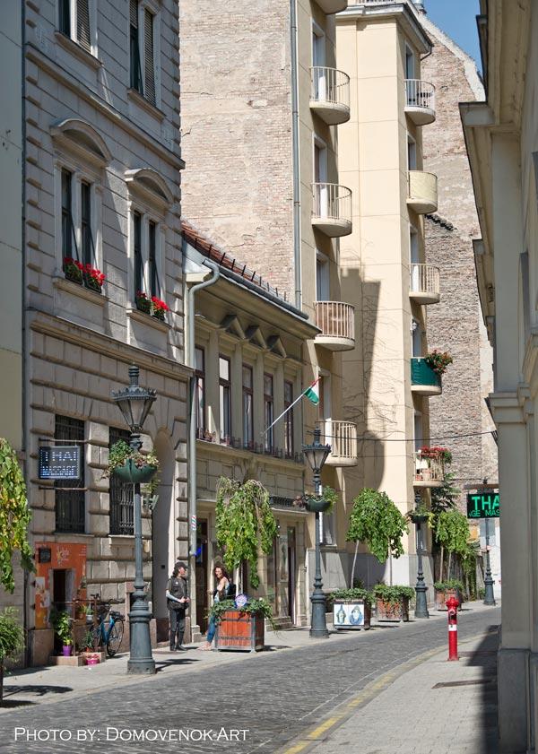Удочка в Будапеште