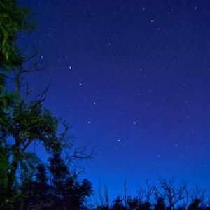 Как фотографировать звёздное небо на телефон и фотоаппарат